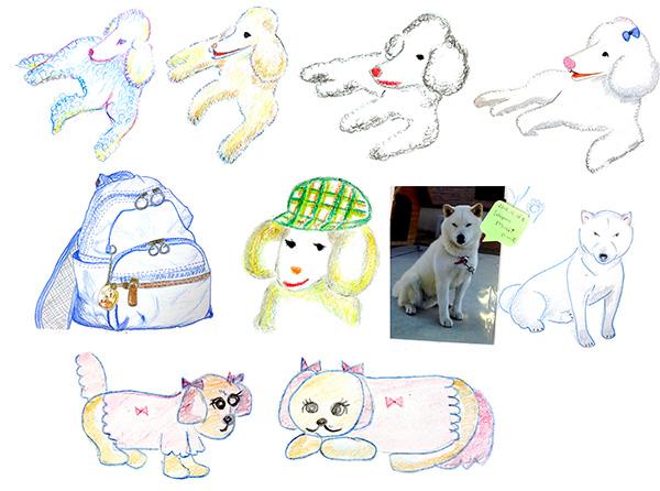 150901_dog_cat_web3.jpg