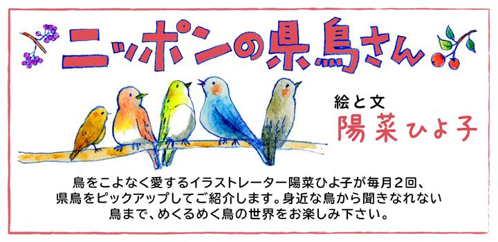 県鳥バナー720×350.jpg