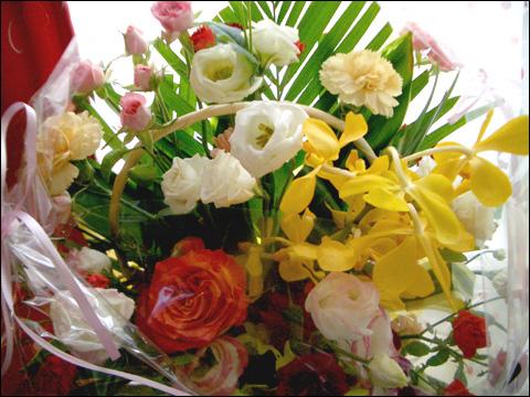 080825flowers1.jpg