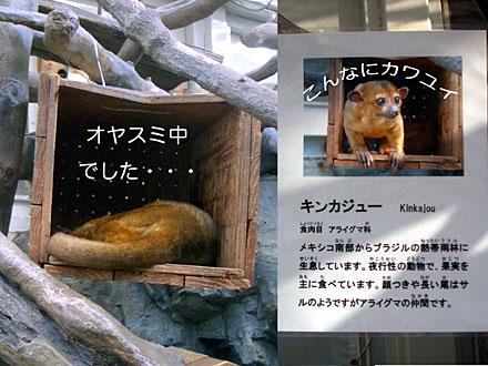 071011sea_museum3.jpg