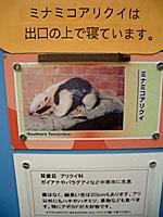 071011sea_museum7.jpg