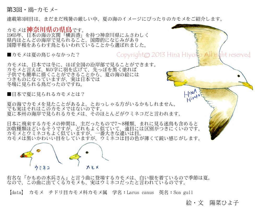 130913kk_best_column03kameome.jpg