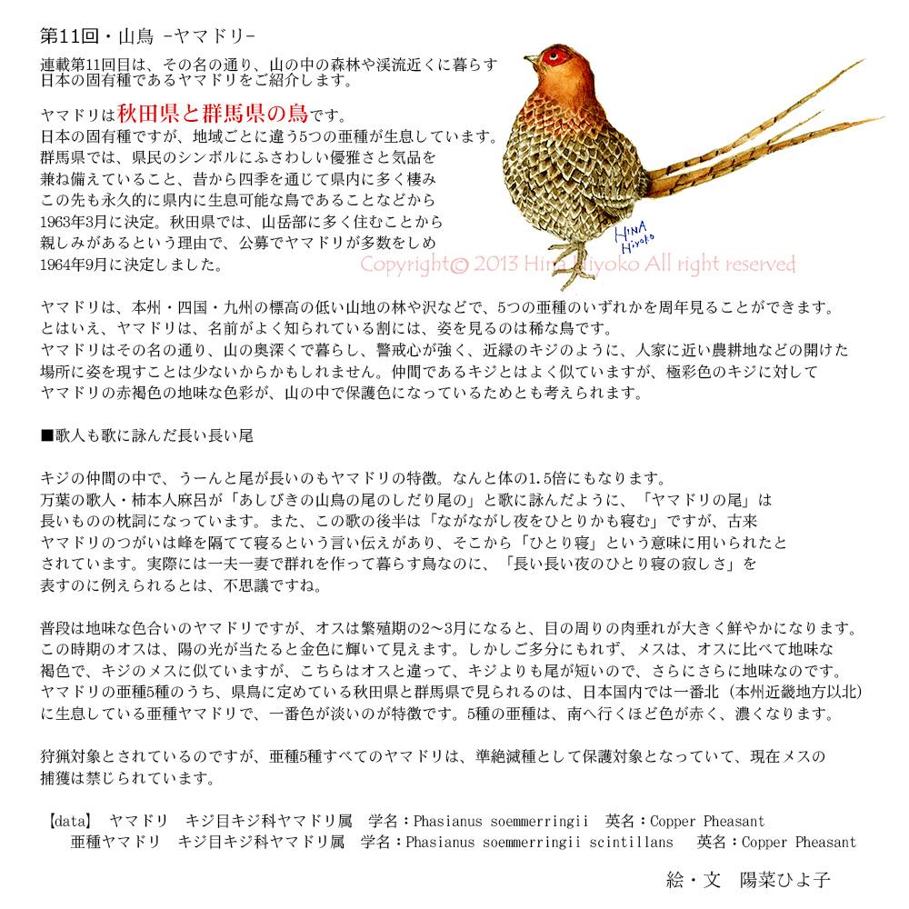 131115k_best_column11yamadori.jpg