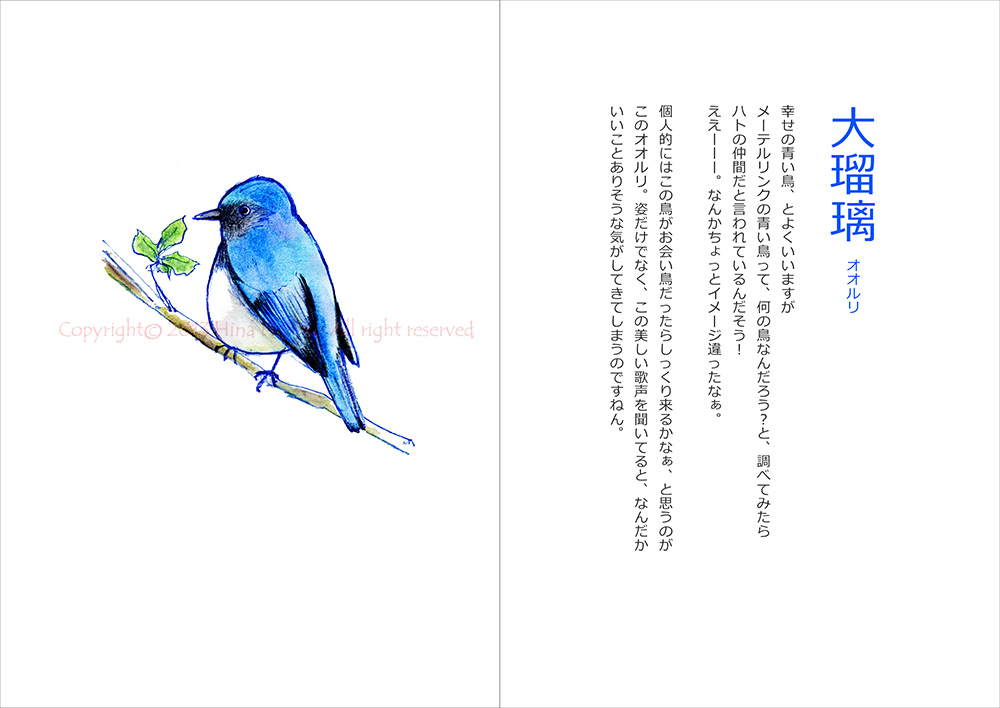130829terakoya_blue02_ooruri.jpg