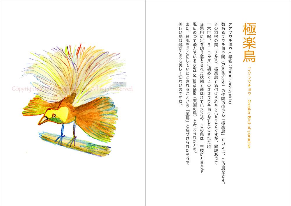 130829terakoya_yellow07_oo_fucho.jpg