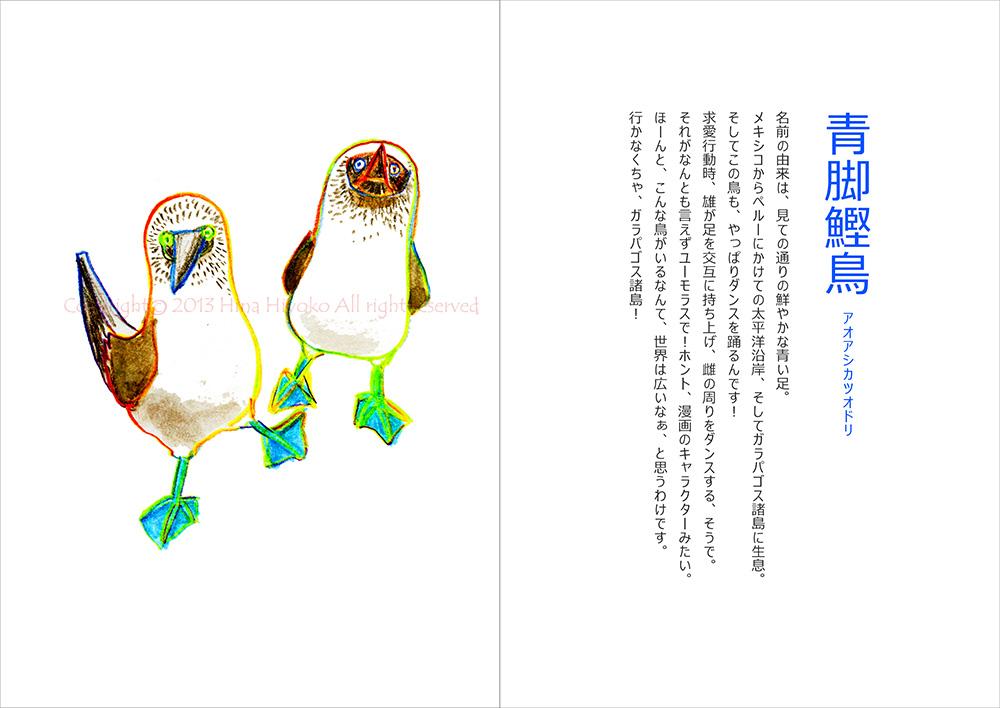 130829terakoya_blue09_aoashi_katxuo_dori.jpg