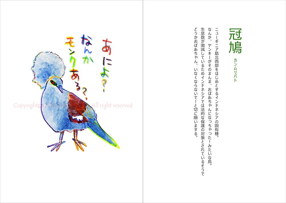 130829terakoya_green08_kanmuribato.jpg