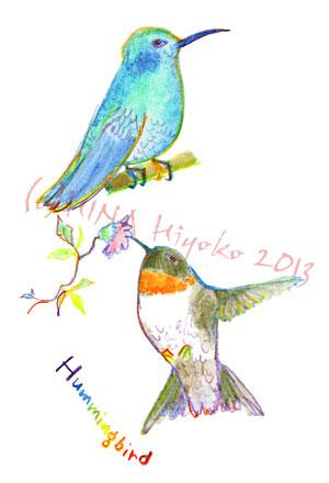 130823humming_birds.jpg
