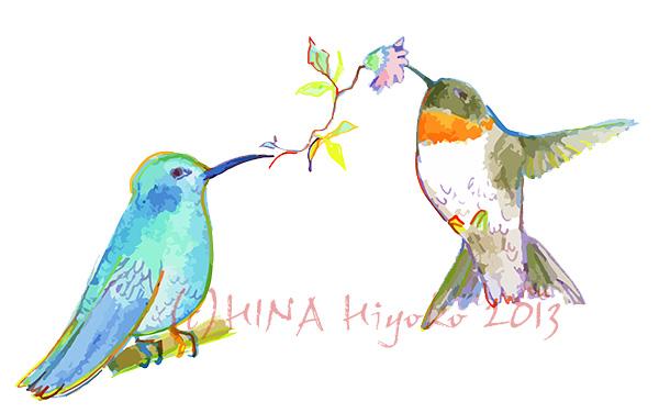 130823malpu_hummingbird_1311web.jpg