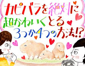 160628kapibara.jpg
