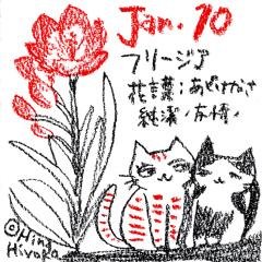 190110instagram_n1s.jpg