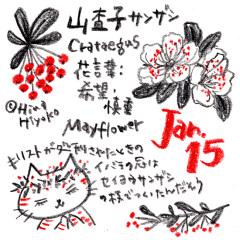 190115instagram_n1s.jpg