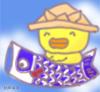 0505hiyoko_s.jpg