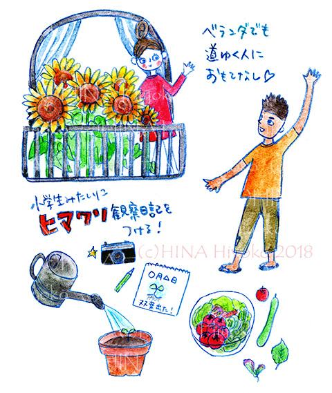 180414NATSU_himawari.jpg