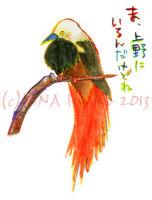 130829akakazari_fuchou.jpg