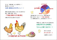 120204ichiba008.jpg