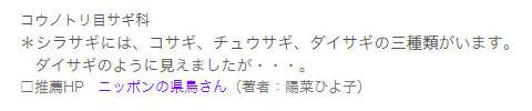 150624_kencho_sagi2.jpg