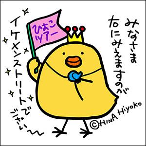 131111hiyoko_dagane5102.jpg