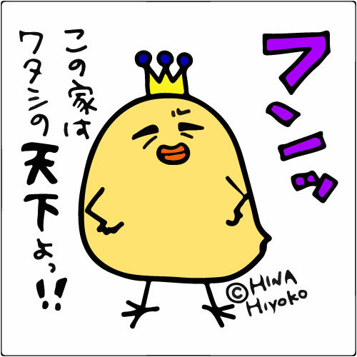 131104hiyoko_dagane7526.jpg
