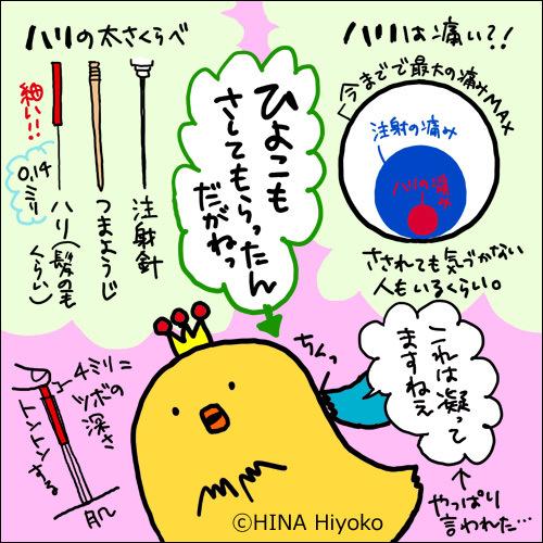 131004hiyoko_dagane8223.jpg