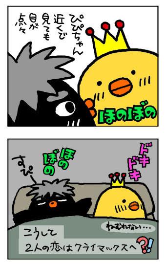 090828yoru2.jpg