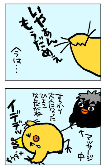 090831yoru2.jpg