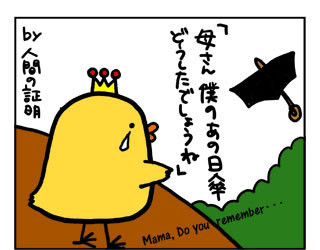 100827kasa4.jpg