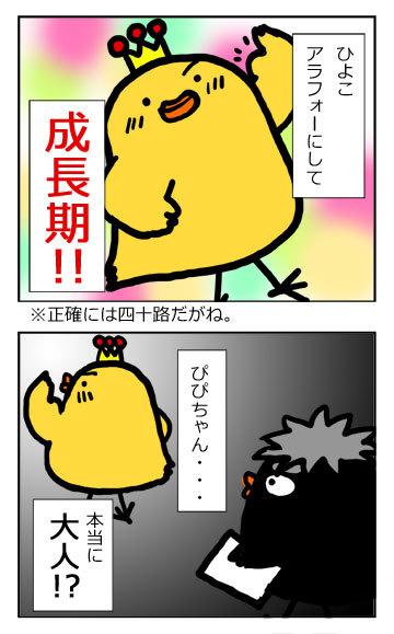 111206fukurou3.jpg