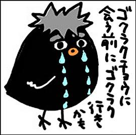 090525gokuraku3.jpg