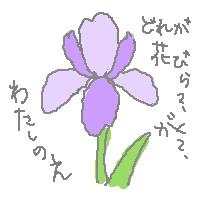 030821iris2.jpg