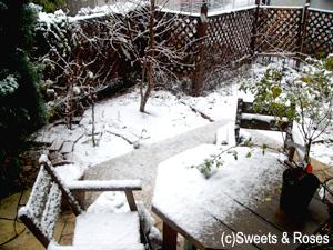 041229first_snow1.jpg
