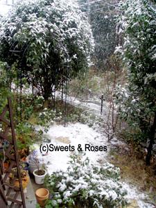 041229first_snow2.jpg