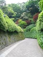 040518kamakura_ootani3.jpg
