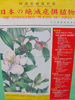040424botanical_shinjyuku.jpg