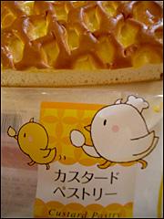 081030custard_pastry.jpg