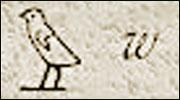 081222hierogrif_uzura.jpg