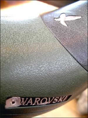 090126swarowski2.jpg