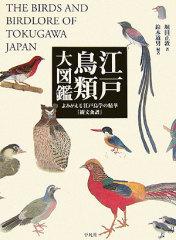 130908edo_birds2.jpg