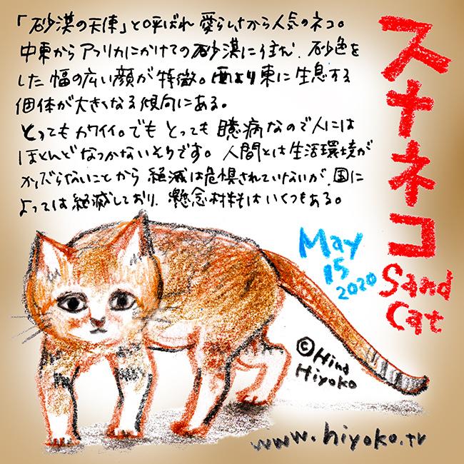 200515_cat010sand-cat_c3s.jpg