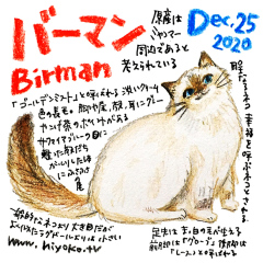 201225_cat022birman_cs.jpg