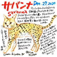 201227_cat023savanna_cs.jpg