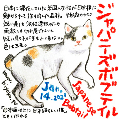 210114_cat032Japanese-bobtail_cs1.jpg
