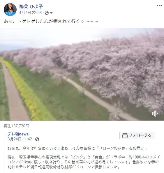 200407sakura1.jpg