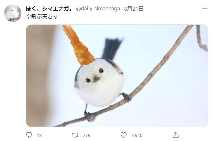 210821_shimaenaga-tenmusu02.jpg
